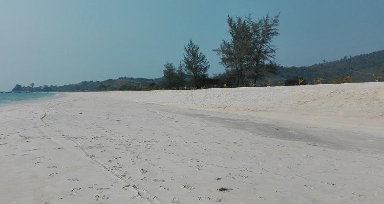 Τα bungalows βρίσκονται πάνω στην παραλία, κρυμένα πίσω από δέντρα της φωτογραφίας